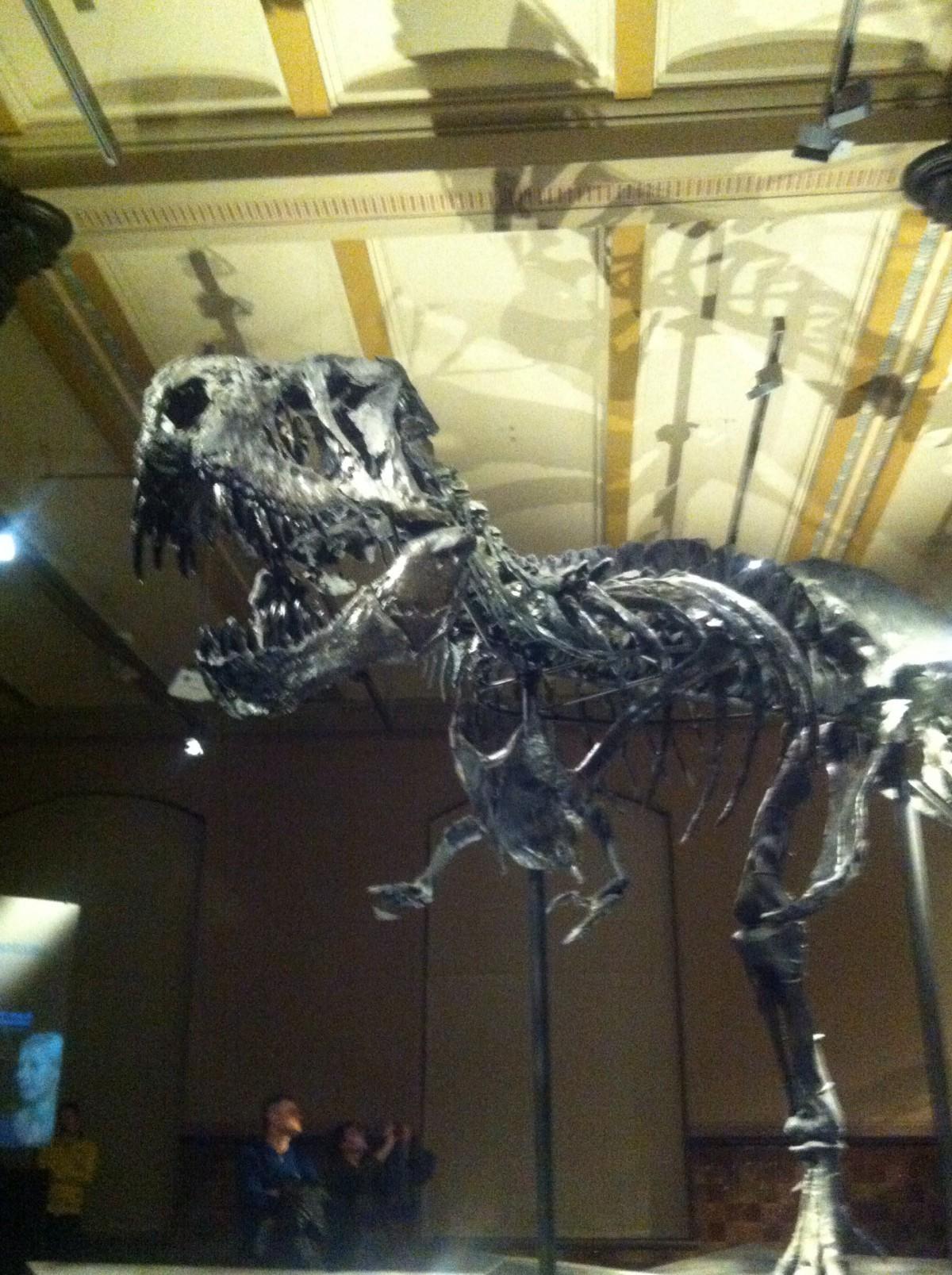 Tristan, der erste Marken-Dinosaurier.
